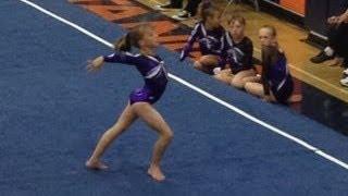 Usa Gymnastics Level 4