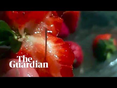 Australias strawberry needle sabotage explained