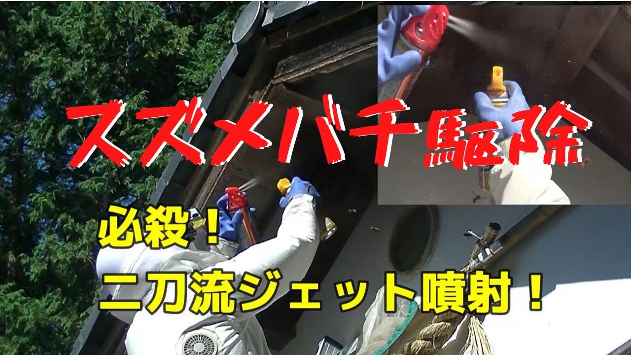 神社でスズメバチ駆除!ジェット噴射二刀流!Defeated the Murder Hornets at a Japanese shrine