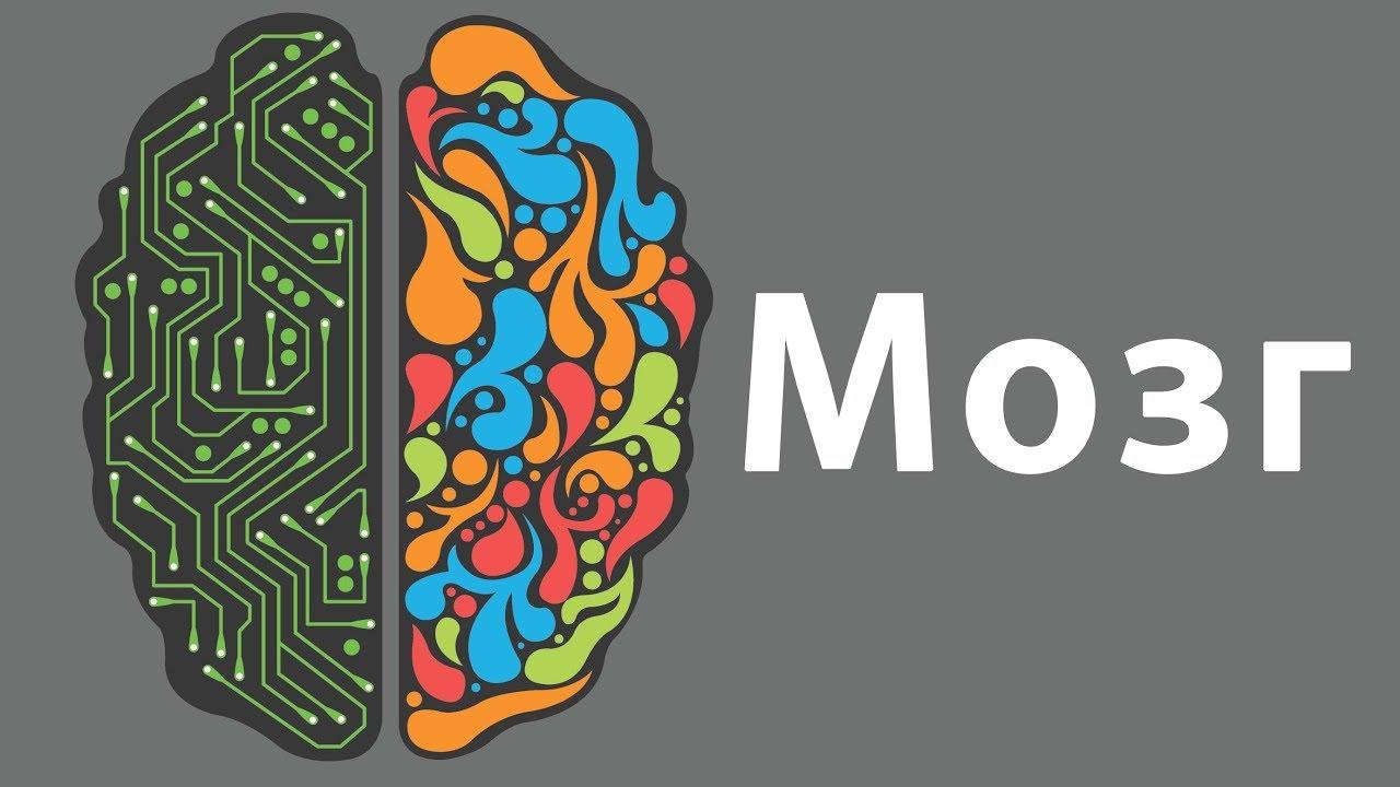Картинки мозги прикольные, картинки андертейл