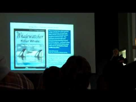 Shifting Trends in Orca Captivity: Part 2