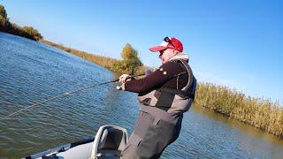 Они РАЗРЫВАЮТ эту ПРИМАНКУ Рыбалка на спиннинг в Астрахани
