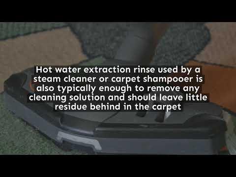 Dry Carpet Cleaning Vs Steam All Kleen