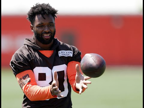 Cleveland Browns receivers: Will they stop dropping the ball? -- Terry Pluto (video)
