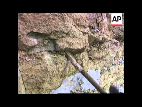 Russia-Mining students dig up prehistoric fossils
