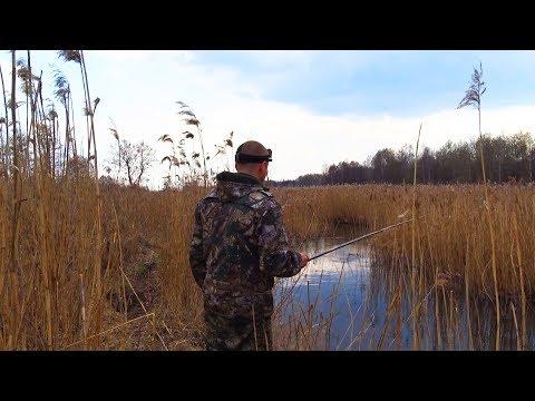 Ловля плотвы весной. Рыбалка на поплавок.