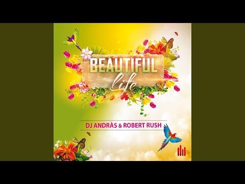 Beautiful Life (Radio Mix)
