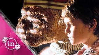 "36 Jahre nach ""E.T."":  So sieht ""Elliott"" heute aus!"
