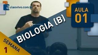 biologia b   aula 01   vrus e reino monera