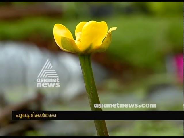 Vasantholsavam 2018 - flower show at Kanakakkunnu