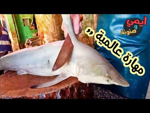 طريقة سلخ وتنظيف سمكة القرش وتقطيعها واعدادها للطهي Skinning And Cleaning The Shark Youtube
