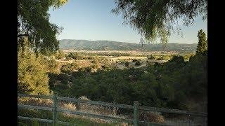 Discover Life in Santa Ynez