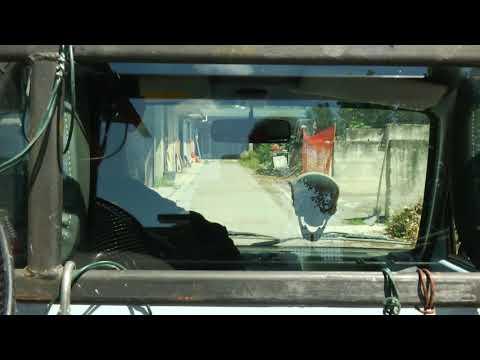 Senza negazione | International Short Documentary ...