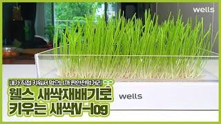 웰스 새싹재배기 V-log