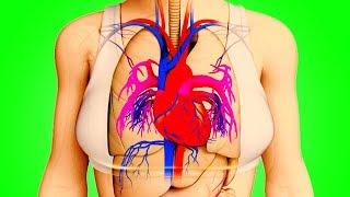 Kalp Krizinden Bir Ay Önce Vücudunuz Sizi Böyle Uyarır