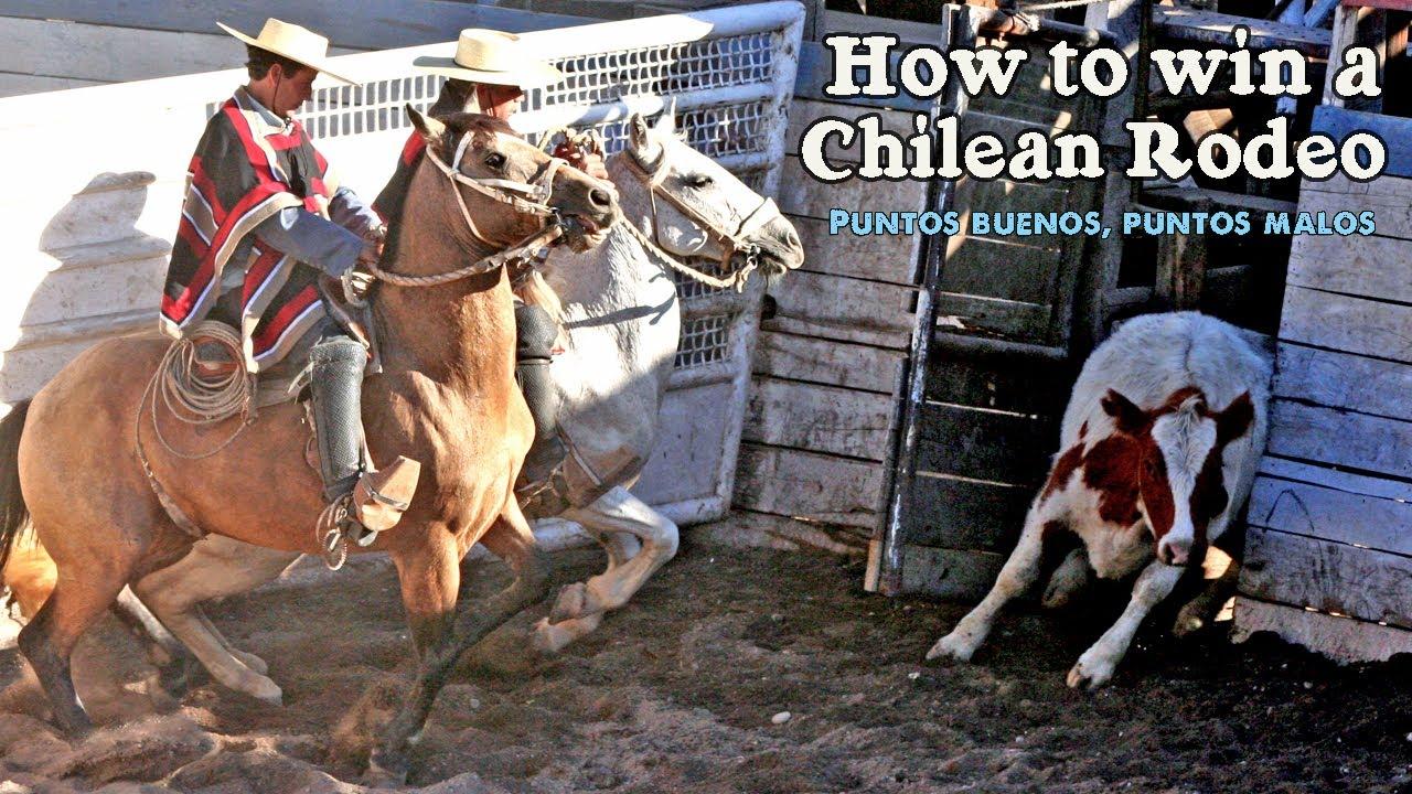 How to win a Chilean Rodeo - Puntos buenos, puntos malos ...