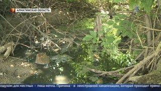 Зловоние и грязная вода: Жители Алматинской области страдают от неисправной канализации