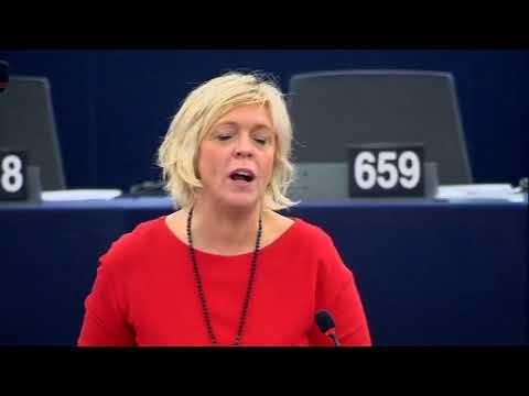 Hilde Vautmans 25 Oct 2017 plenary speech on EES