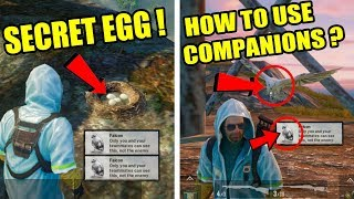How To Unlock Companions ? Pubg Mobile NEW Tips & Tricks ! Only 0.5% People Know About This Trick ?
