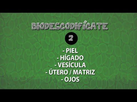 BIODESCODIFÍCATE - 02