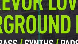 Trevor Loveys - 90s House Sylenth Presets - Loopmasters Patchworx