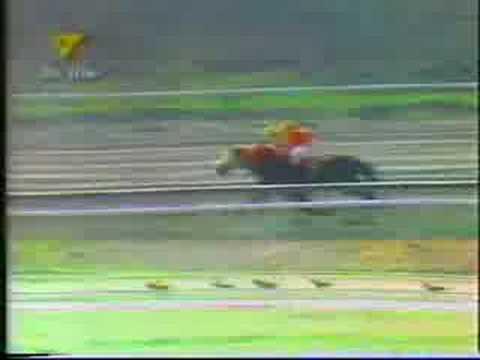 Clasico Jose Antonio Paez 2001