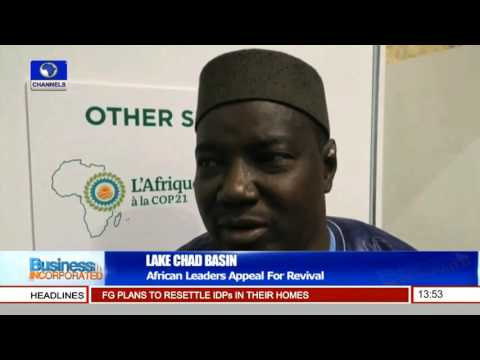 Business Incorporated: African leaders Appeal For Revival Of Lake Chad Basin