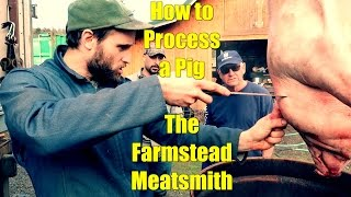 How to Process a Pig: The Farmstead Meatsmith