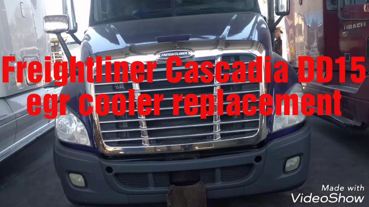 Freightliner Cascadia DD13 DD15 DD16 engine egr cooler replacement