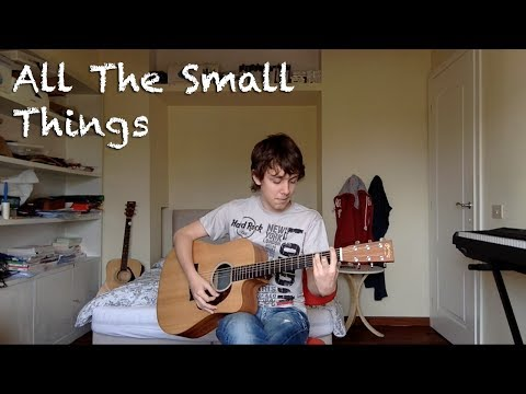Blink-182 - All The Small Things (Acoustic Cover)