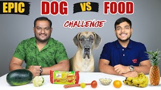 burger king food challenge