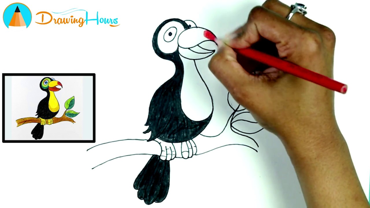 How To Draw A Bird Coloring Pages For Kids