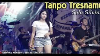 Download lagu TANPO TRESNAMU - SELA SILVINA