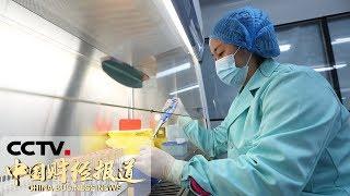 《中国财经报道》 20190603 16:00| CCTV财经