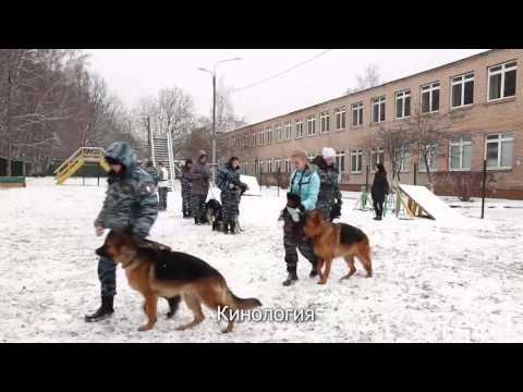 Есть ли в Москве колледжи или лицеи с бесплатным обучением