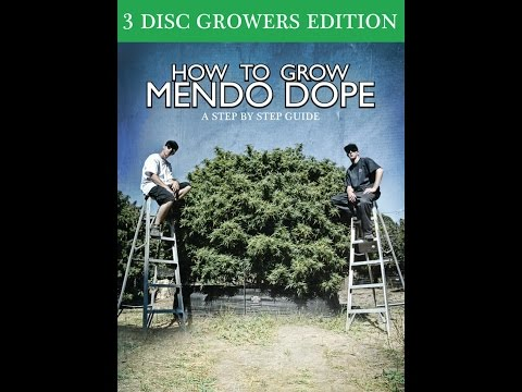 HOW TO GROW Trailer (2017) Mendo Dope