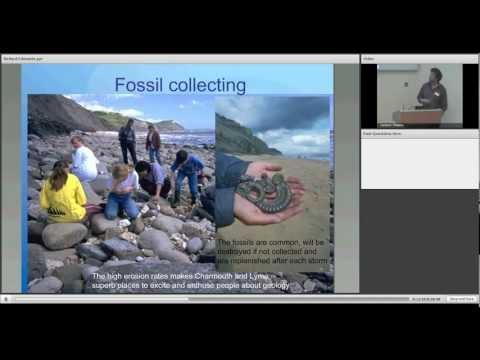 The Dorset and East Devon Coast World Heritage Site