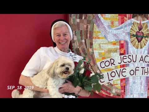 Cor Jesu Academy: 2019-2020