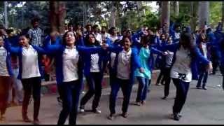 Finance 15th Batch Rag Day Flashmob