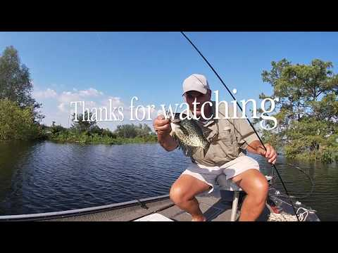 Crappie And Bream Fishing In Henderson Lake