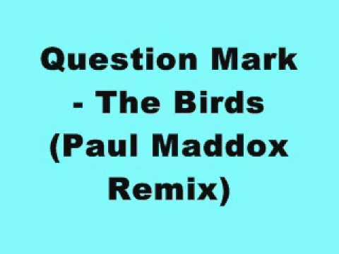 Question Mark - The Birds (Paul Maddox Remix)