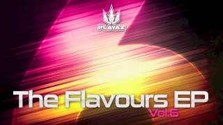Various Artists - The Flavours EP, Vol. 6 - Playaz Recordings