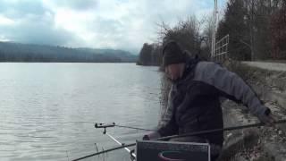 Stillwasser Feedern Jänner Teil 1