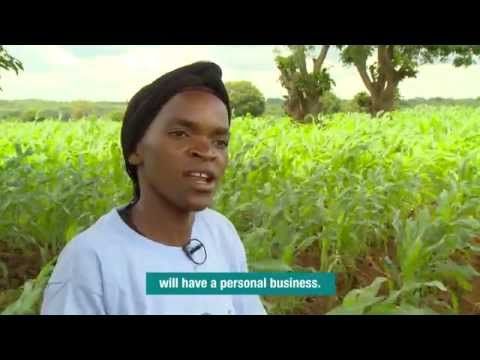 African agriculture: Zambian women's clubs boost food security