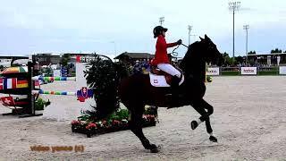 Horse show jumping falls compilation