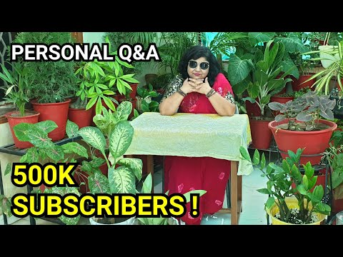 Personal QnA / Questions & Answers || Answering Your Questions About Me ||500K|| Fun Gardening