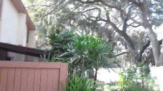 7914 Cedar Dr., Temple Terrace Fl 33637