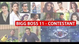 Bigg Boss Season 11|| Contestant Pictures & Bio
