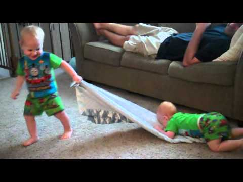 Twin boys playing with their Boston Terrier