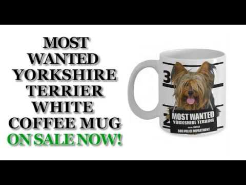 Most Wanted Yorkshire Terrier – 11oz White Ceramic Coffee Mug